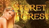 Игровой автомат Secret Forest от Максбетслотс - онлайн казино Maxbetslots